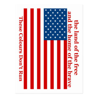 U S A FLAG the land of the free Postcard