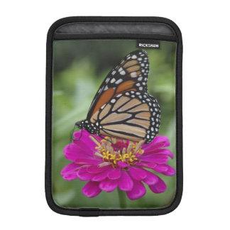 U.S.A., Massachusetts, Boylston, Tower Hill iPad Mini Sleeve