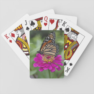 U.S.A., Massachusetts, Boylston, Tower Hill Playing Cards