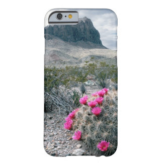 U.S.A., Texas, Big Bend National Park. Blooming iPhone 6 Case