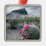 U.S.A., Texas, Big Bend National Park. Blooming Metal Ornament