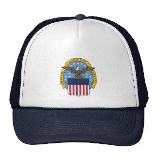 U.S. Agencia de logística de defensa Gorra
