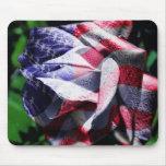 U.S. bandera, sobre un color de rosa en un mousepa Tapete De Ratones