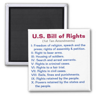 U.S. Bill of Rights 2 Inch Square Magnet