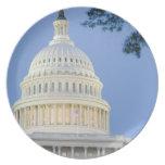 U.S. Capitolio en la oscuridad, C.C. de Washington Plato De Cena