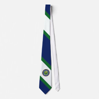 U.S. Federal Aviation Agency Diagonal Striped Tie
