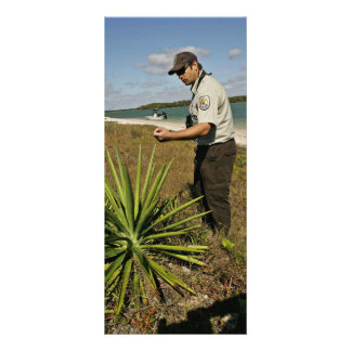 U.S. Fish and Wildlife employee looking at yucca p Personalized Rack Card