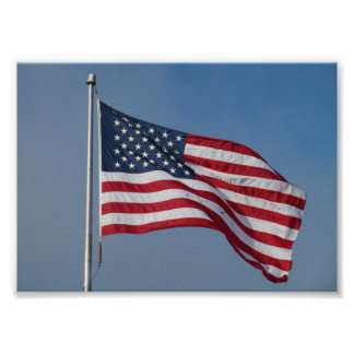 U.S. Flag fly proud and free Poster