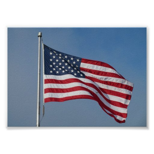 U.S. Flag fly proud and free Print