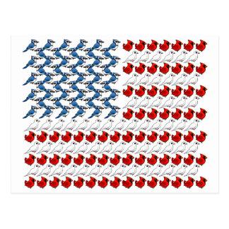 U.S. Flag of Birds Postcard