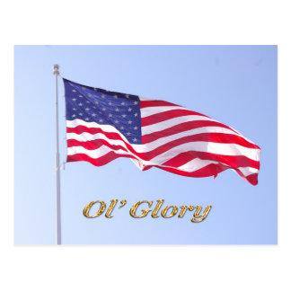 u s flag, ol' glory postcard