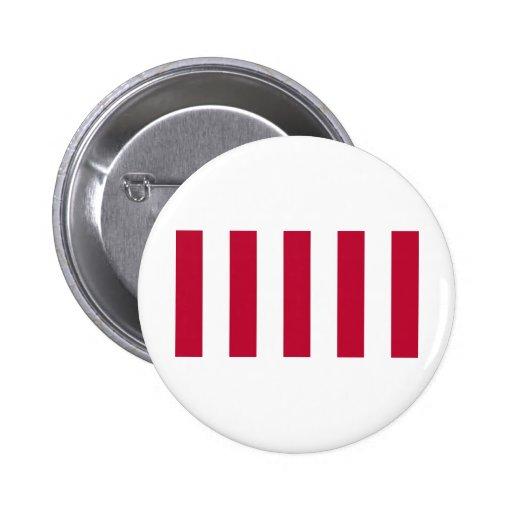 U.S. Hijos de la bandera vertical de la tira de la Pin