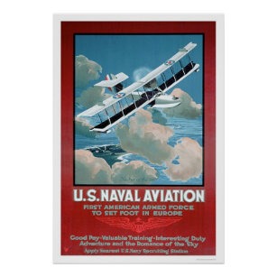 U.S. Naval Aviation (US02304) Poster