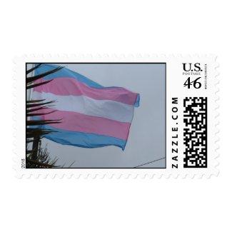 U.S. Postage Stamp - Transgender Flag