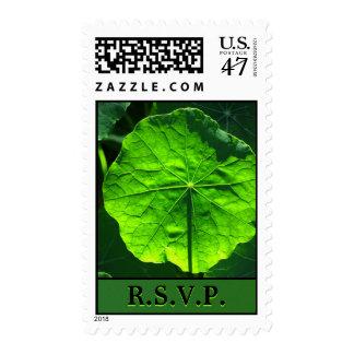 U.S. Sello - hoja verde - RSVP