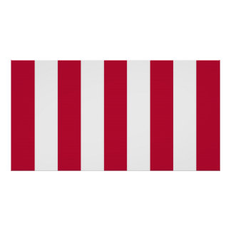 U.S. Sons of Liberty 9 Vertical Strip Flag Poster