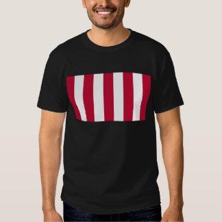 U.S. Sons of Liberty 9 Vertical Strip Flag T-Shirt