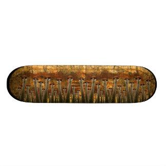 uber grunge cranes skateboard