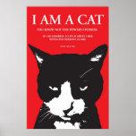 Uberlord felino - poster