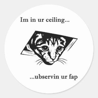 Ubservin u del gato del techo… pegatinas