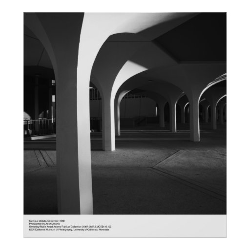 UCSD Campus Details by Ansel Adams Poster
