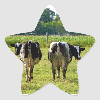 Udder Viewpoints Stickers