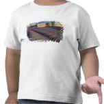 UE, Francia, Provence, campos 3 de la lavanda Camiseta