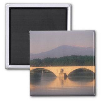 UE, Francia, Provence, Vaucluse, Aviñón. Pont Imán Cuadrado