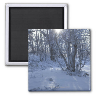 Ueda, Nagano Prefecture, Japan 2 Inch Square Magnet