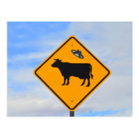 UFO Cattle Crossing Sign in New Mexico Postcard