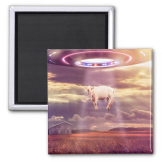 UFO Cow Abduction Encounter Poster Magnet