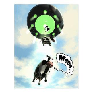UFO Cow Abduction Postcard