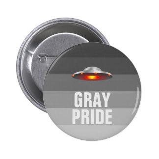 UFO Gray Pride button Pin