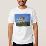 UFO Salamander at Devils Tower Tshirt