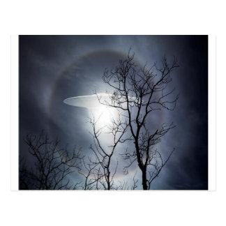 UFO with silhouetted tree branches Post Card