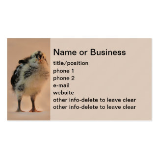 Ugly Chick Double-Sided Standard Business Cards (Pack Of 100)