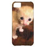 Ugly Duckling iPhone 5C Covers