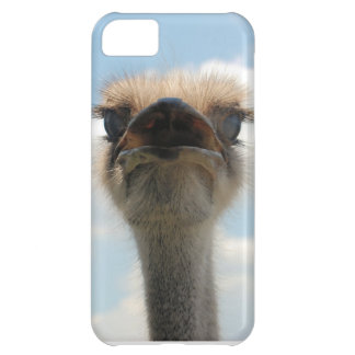 Ugly Man Ostrich iPhone 5C Case