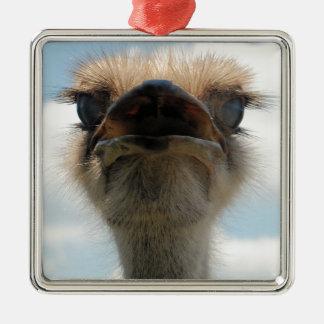 Ugly Man Ostrich Metal Ornament