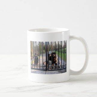 Uh, You Will Let Us Out. Right? Mugs