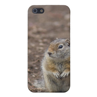 Uinta Groud Squirrel Case For iPhone SE/5/5s