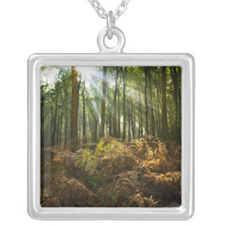 UK, England. Rays of sunlight streaming through Silver Plated Necklace