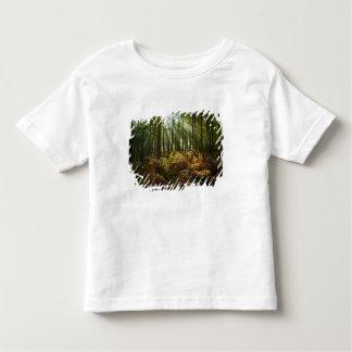UK, England. Rays of sunlight streaming through Toddler T-shirt