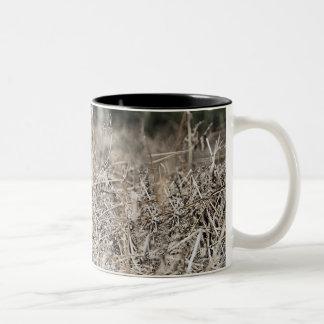 UK, England, Suffolk, Thetford Forest, Black 2 Two-Tone Coffee Mug