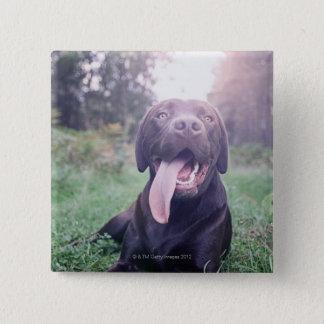 UK, England, Suffolk, Thetford Forest, Dog Pinback Button