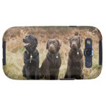 UK, England, Suffolk, Thetford Forest, Portrait Galaxy S3 Cover