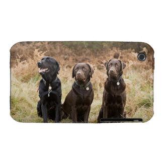UK, England, Suffolk, Thetford Forest, Portrait iPhone 3 Case