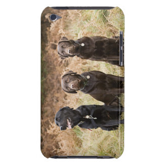 UK, England, Suffolk, Thetford Forest, Portrait iPod Touch Cover