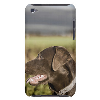 UK, England, Suffolk, Thetford Forest, Profile iPod Touch Case