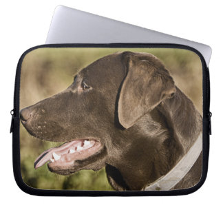 UK, England, Suffolk, Thetford Forest, Profile Laptop Sleeve